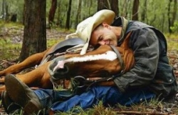 Call for Papers for Living with Horses